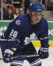 Tie Domi - Maple Leafs, 8x10 Color Photo