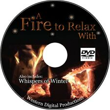 DVD Relaxing Ambient Family Holiday Fireside Flames Winter Snowy Storm Mountain