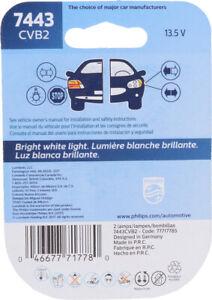 Lamp Assy Sidemarker Philips 7443CVB2