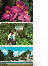 5 PC Hawaii Orchids Birds Luau Temple Postcards
