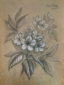 Branch with Rhododendron flowers. Pencil and white pastel  original drawing A4