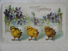 Antique Easter PC Chicks Come Out Eggs, Flowers, Clear Lake, Iowa IA 1908