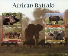 Liberia 2019 MNH African Buffalo 4v M/S Birds Elephants Wild Animals Stamps