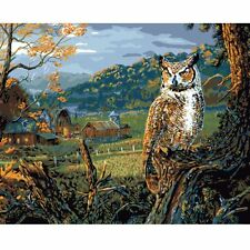 16X20'' Owl Edge of the Night Digital Paint By Number Kit Linen Canvas Plaid New
