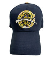 Minor League Baseball Hat Charleston River Dogs OC Sports Cap Child Youth