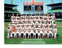 1983 CHICAGO WHITE SOX 8X10 TEAM PHOTO FISK BAINES  BASEBALL ILLINOIS MLB