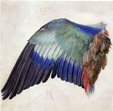 Albrecht Durer: Left Wing of Blue Roller and A Blue Roller - 2 Fine Art Prints