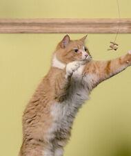 Jeu tout simple pour faire dancer votre chat ! Envoi Gratuit