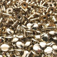 Rapid Rivets Large Brass Plated 100 Pack 1275-11 by Stecksstore