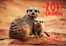 Chester Zoo 2017 Calendar Used /not marked A4 format opens to A3 month to view