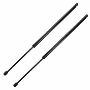 Pair Of Liftgate Tailgate Lift Supports Shock Fits 05-09 Chevrolet Uplander