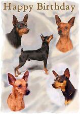Mini Pincher Dog Design A6 Textured Birthday Card BDMINPIN-2 paws2print