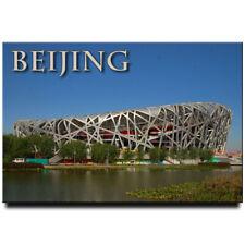 Bird's Nest Stadium fridge magnet Beijing China travel souvenir