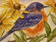 Bluebird bird wildlife flower print of painting
