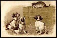 cpa fantaisie animaux chats . chatons . chiens. chiots  . cat . dogs