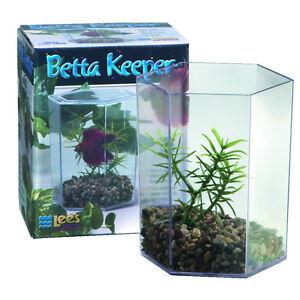 (Brand New) Lee's Aquarium Fish Betta Hex Keeper With Lid & Decor 24oz #19538