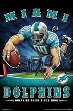 MIAMI DOLPHINS - END ZONE MASCOT POSTER - 22x34 NFL FOOTBALL 15987