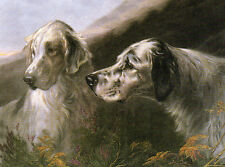 ENGLISH SETTER CHARMING DOG GREETINGS NOTE CARD TWO BEAUTIFUL DOG HEADS
