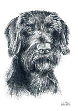 Deutsch Drahthaar 04, Kunstdruck einer Kohlezeichnung, 30 x 21 cm, Hunde