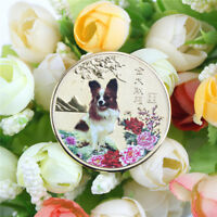 1PC year of the dog gold chinese zodiac 2018 souvenir coin tourism gift HU