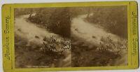 Moss Cataract Delaware Water Gap 1880s Stereoview