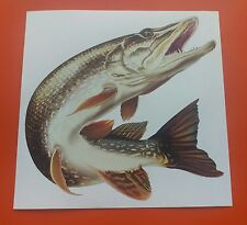 "Superb Quality 6"" Pike Sticker / Decal printed on high quality 7-10 year vinyl"