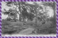 Tarjeta Postal - Bosque de Fontainebleau - meseta de la caverna de ladrones