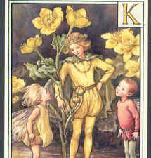 "Fairy Alphabet ""K"" Golden Kingcup,Cmb,Barker Postcard"