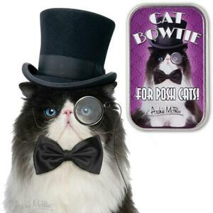 Archie McPhee Bow Tie For Cats in Collectible Tin Box