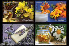 Medicinal Plants set of 4 stamps mnh Romania 2015 lavender marigold chamomile