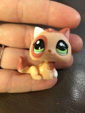 Littlest Pet Shop Brown & Peach KITTEN #1818 Green Eyes White Ear Orange Cat Tan