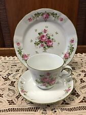 Winterling Bavarian Porcelain Trio Cup Saucer And Plate
