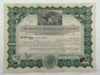 1935 Rush Bay Holding Company Limited  Stock Certificate Script PK23