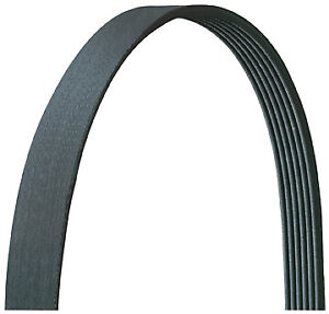 Dayco 5040378DR Serpentine Belt Alternator and Power Steering