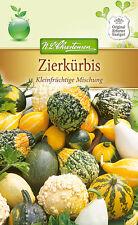 Zierkürbis kleinfrüchtig - Cucurbita pepo, Kürbis, ca. 20 Samen Kürbissamen 5530