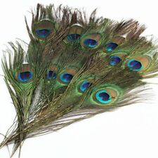 Real Natural Peacock Tail Eyes Feather 10-12 Inches Wedding Party Home Decor DIY