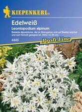 Kiepenkerl - EDELWEISS 4445 resistente al freddo Pianta Perenne ALPENBLUMEN