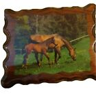 Vintage 1985 Horses Grazing Lacquered Plack Wall Hanging