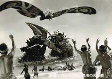 GODZILLA VS THE SEA MONSTER 1966 JAPANESE SCI-FI MONSTER MOVIE PHOTO NEW!
