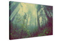 MISTY FOREST CANVAS PICTURES WALL ART PRINTS HOME KITCHEN DECORATION POSTERS