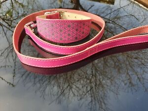 Leather Dog Collar & Lead Set, Pink, Lurcher Whippet Greyhound Sighthound