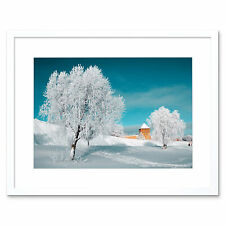 Photo Tree Snow Blue Landscape Winter Scenic Blue Framed Print 12x16 Inch