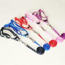 Useful For Pet Traction Dog Cat Collar Peppy Harness Collar Pet Leash Rope Belt
