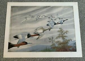 """REX BRASHER """"FLYING DUCKS"""" HAND COLORED LITHOGRAPH PRINT. SIGNED IN INK. 1920s"""