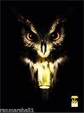 San Francisco Zoo Owl Bird Wild Animal United States Advertisement Art Poster
