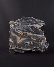 Beautiful West Australian Wyloo Ashburton agate polished end piece
