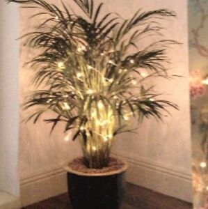 50 White Decorative Lights/Rice Lights - Christmas / Home / Wedding