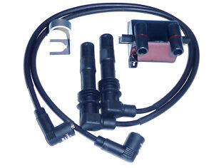 Zündspule BMW R 1100, R 850, R 1150,  ignition coil BERU ZS224 mit Zündleitungen