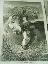 Gravure 1861 Les Chevaux au vert daprès tableau de Brown
