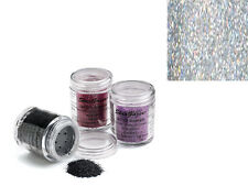 STARGAZER HOLOGRAM GLITTER SHAKER FACE BODY HAIR NAILS